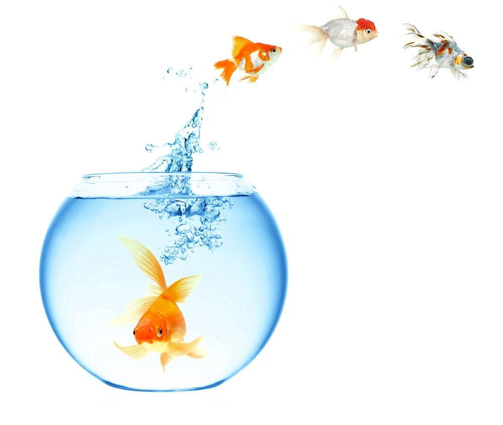 як чистити акваріум