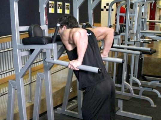 Які м'язи працюють при заняттях на брусах