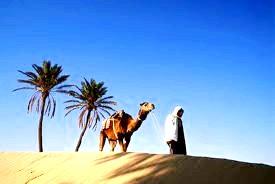 Що привезти з Тунісу