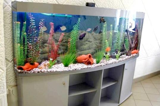 Фонтан, акваріум або водоспад: що вибрати для дому