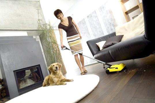 Електровіник: іграшка або домашній помічник?