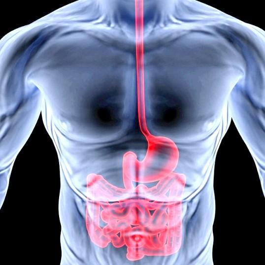 Ендоскопія як діагностична та лікувальна процедура