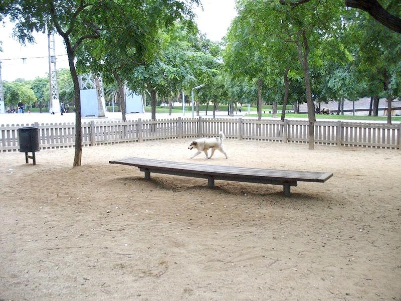 покриття для вігула собак