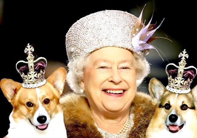 Якої породи собака англійської королеви?