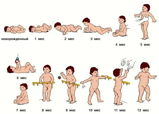Розвиток дитини по місяцях