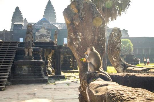 Самостійну подорож до Камбоджі